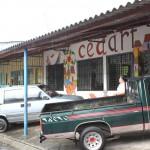 CEDART La Palma